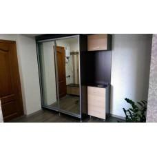 Мебель для прихожей ( Шкаф купе ) М-22